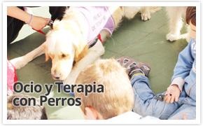 ocio-y-terapia-con-perros